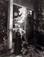 "Arnold Newman (1918 - 2006)<br><em>Ansel Adams</em>, 1976</br>Vintage gelatin silver print<br>Image: 19 1/4 x 15"""