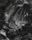 <em>Melting Ice, Arizona,</em> 1938<br />Vintage gelatin silver print<br />Sold