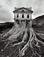 <em>Untitled (Tree Building)</em>, 1982<br>Gelatin sliver print
