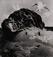 <em>Untitled (Birds on rocks)</em>, 1970<br>Gelatin sliver print