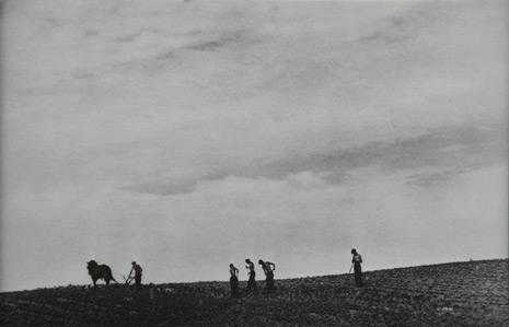 "<em>Famers Plowing Field</em>, nd<br>Gelatin silver print</br>Image: 4 1/4 x 3 1/8""; Paper: 5 1/2 x 3 1/2"