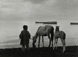 <em>Untitled (Catemato, Veracruz - Boy with Horses on Beach),</em>1956<br />Gelatin silver print<br />Image: 8 1/8 x 10 7/8""