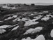 <em>Seal Island, Maine</em>, c. 1930s<br>Vintage gelatin silver print