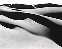 Edward Weston: The Photographer and Friends
