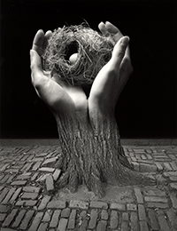 Jerry Uelsmann: Process and Perception