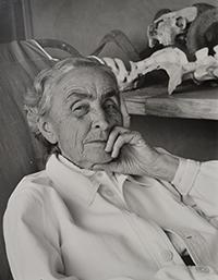Georgia O'Keeffe and the Interpretive Landscape